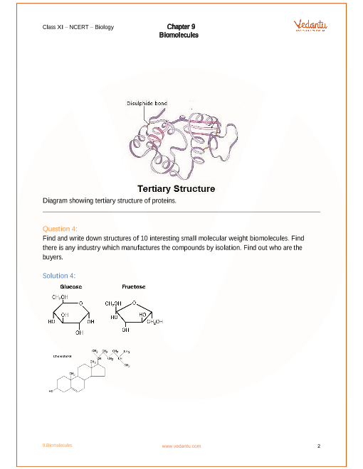 NCERT Solutions for Class 11 Biology Chapter 9 Biomolecules – Biomolecules Worksheet