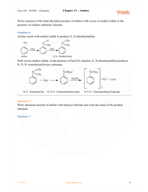 Amines Ncert Solutions Pdf
