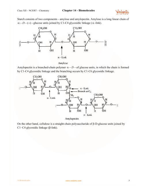 Biomolecules Ncert Pdf