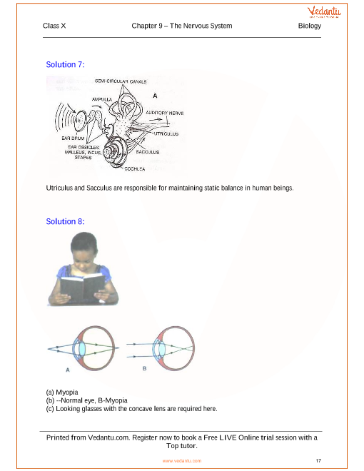 The nervous system solutions for icse board class 10 science the nervous system solutions for icse board class 10 science concise selina publishers ccuart Choice Image