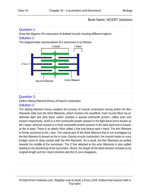 NCERT Solutions for Class 11 Biology Chapter 20 part-1