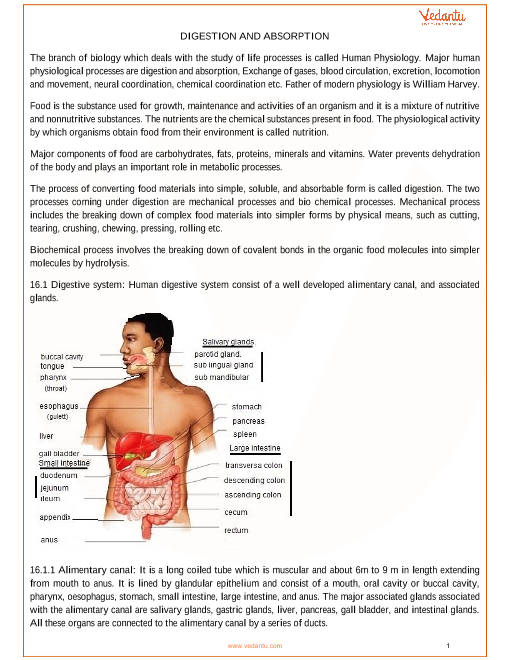 Chapter 16 - Digestion and Absorption part-1