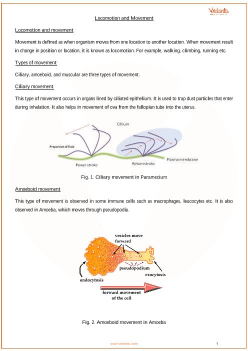 Chapter 20 - Locomotion and Movement part-1