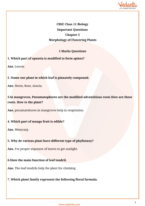 Important Questions Class 11 Biology Chapter 5 part-1