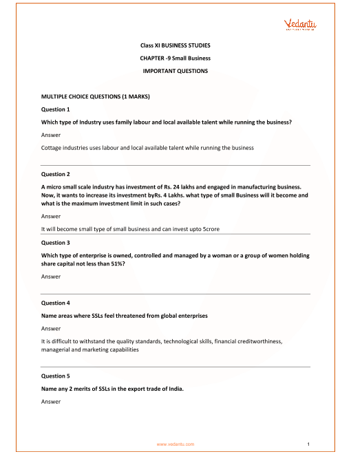 Important Questions for Class 11 Business Studies Chapter 9_Small Buisnesses part-1