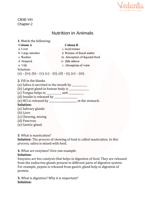 cbse class 7 science nutrition in animals worksheets with. Black Bedroom Furniture Sets. Home Design Ideas