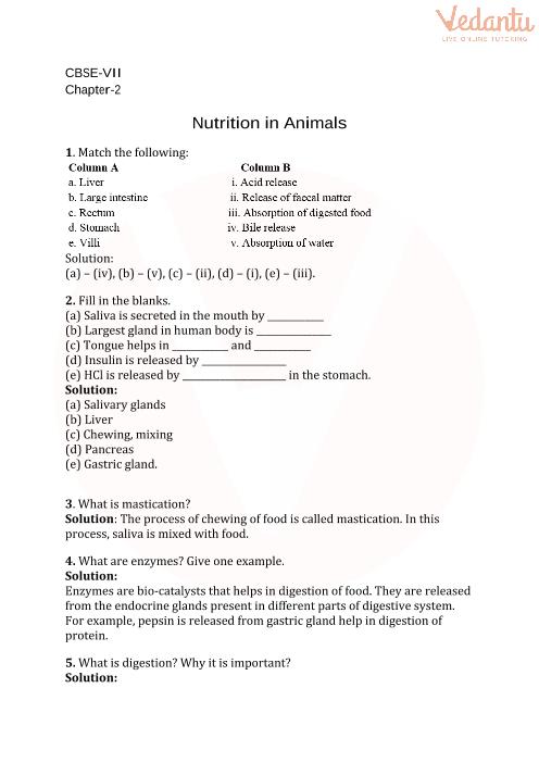 2. Nutrition in Animals part-1